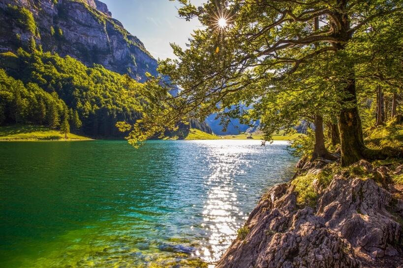 Pre-Alpine Express - kolej panoramiczna w Szwajcarii